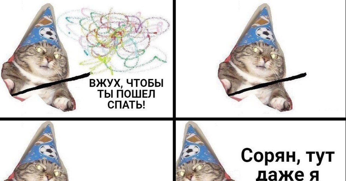 Котик вжух картинки