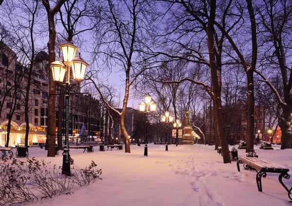 Лунная зимняя ночь картинки это канделябры