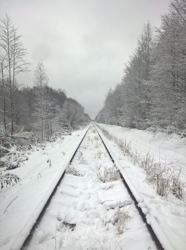 Путь к Припяти