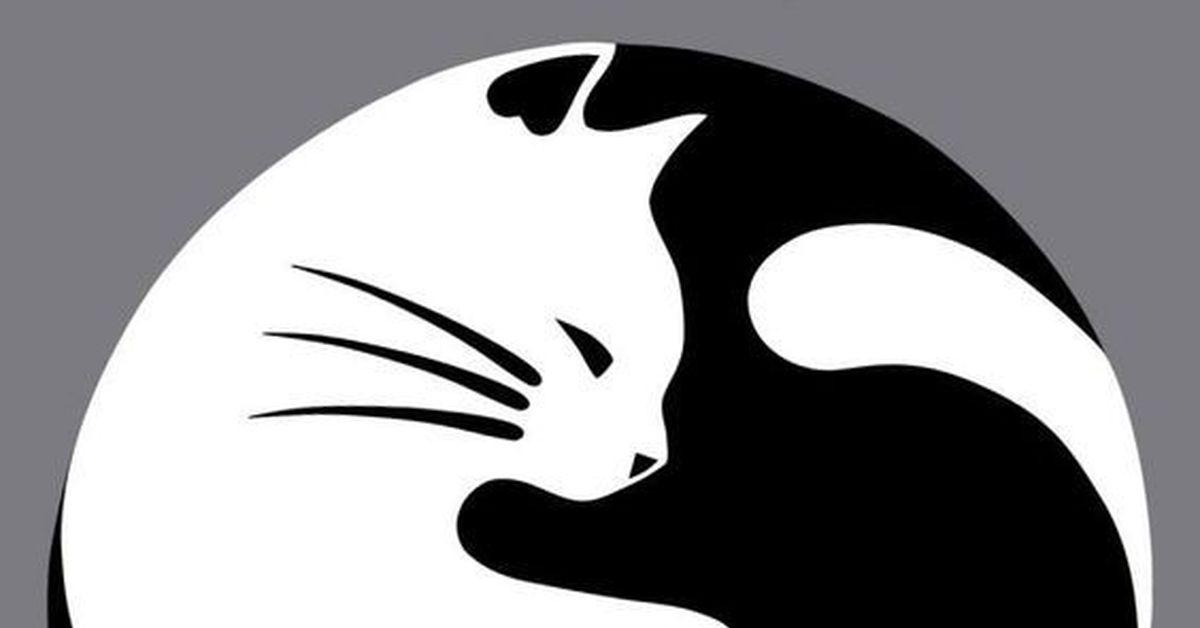 это кошки инь янь картинки принцесса силы зла