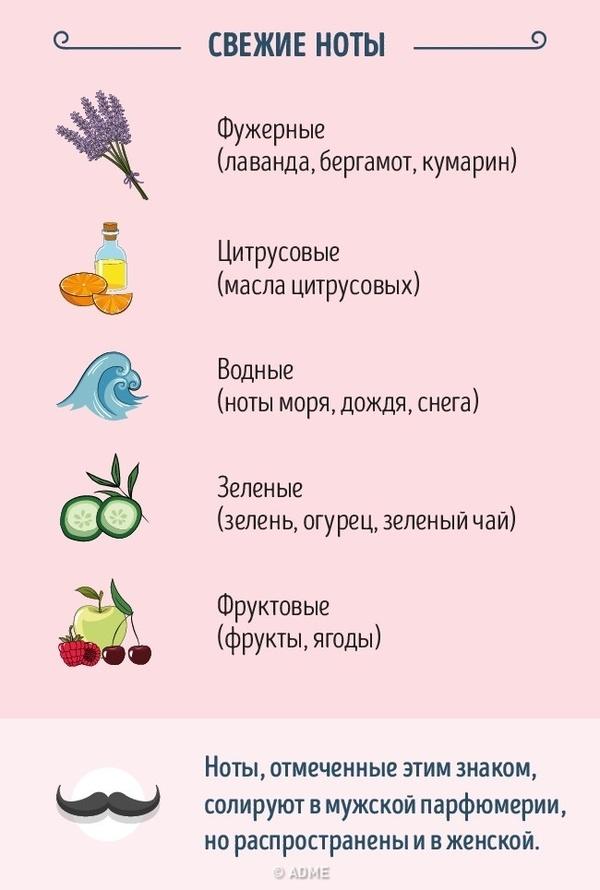 Гид по парфюмерии гид, Интересное, adme, духи, парфюмерия, длиннопост