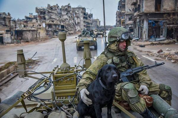 Новогодняя работа Сирия, Россия, алеппо, Сапер, армия, видео, длиннопост, Политика