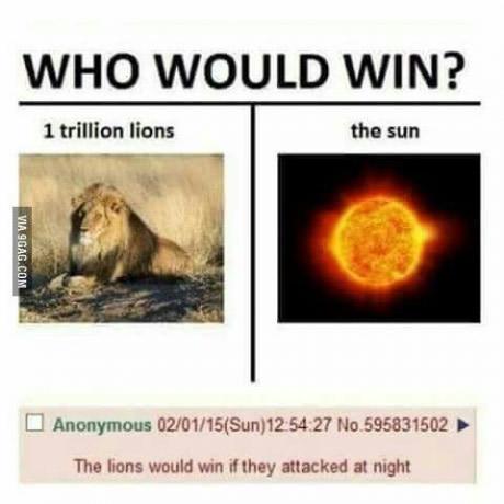 Львы против Солнца 9gag, Лев, Солнце, Победа