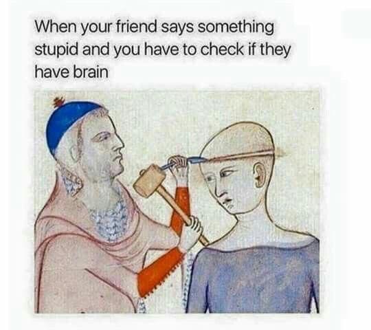 Когда твой друг сказал очередную глупость и тебе приходится проверять, есть ли у него мозги