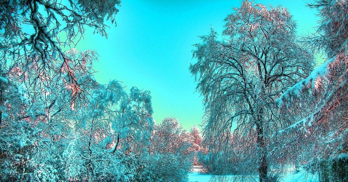 Зимние Живые Обои