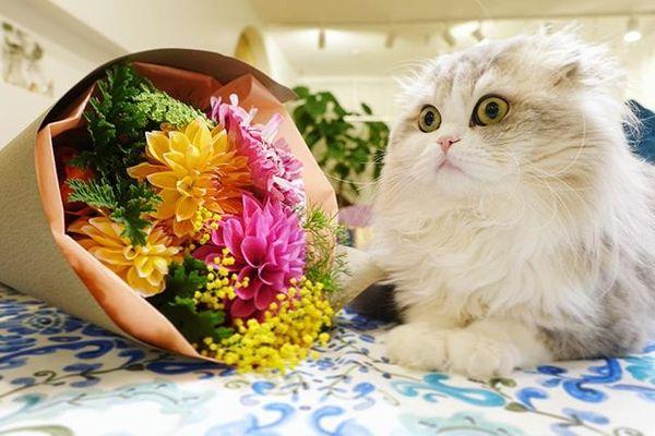 Когда муж подарил цветы в первый раз за пять лет
