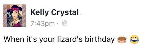 """""""Когда у твоей ящерки День Рождения"""" день рождения, ящерица, питомец, милота, торт, длиннопост"""