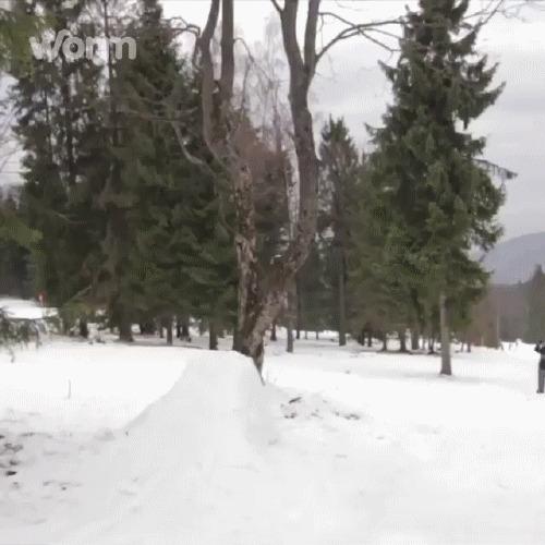 Сальто Экстрим, Горные лыжи, Трюк, Сальто, Трамплин, гифка