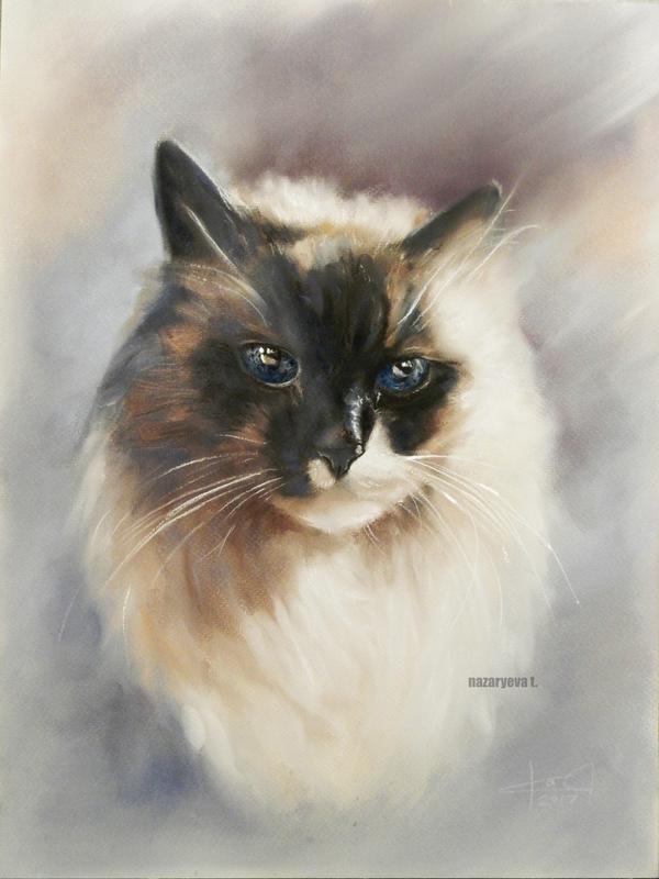 Пятничное моё. Кот с космическими глазами Кот, Рисунок, Пастель, Моё
