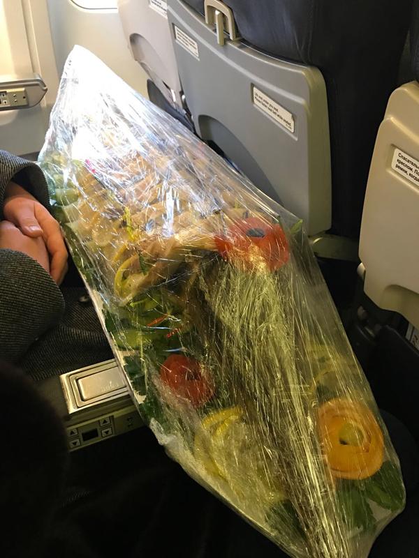Рейс Москва-Санкт-Петербург самолет, Рыба, Багаж, не мое