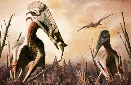 Крылатый кошмар Трансильвании. Аждархиды ели динозавров на завтрак динозавры, птерозавры, дракула, румыния, длиннопост