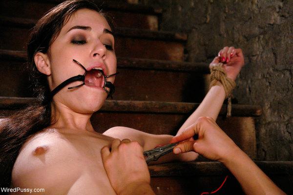 вопрос порно фото перл даймонд Воспользоваться услугами данного блога