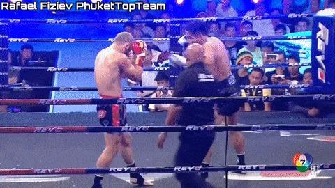 Избранный Тайский бокс, Бокс, Гифка