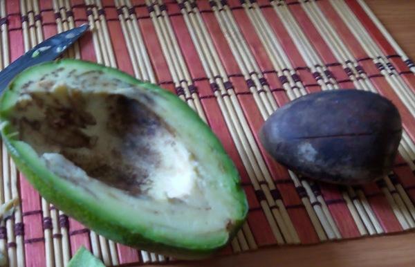 Наш авокадо покушал)