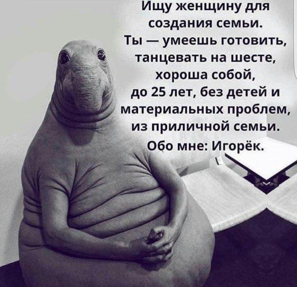 Всем нам иногда хочется быть Игорьком