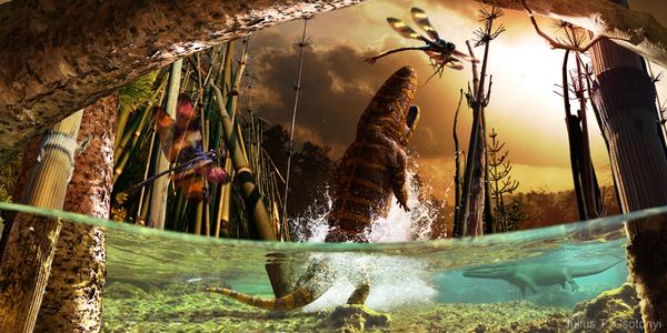 Членистоногие Карбона- кислородные гиганты Ssynapsid, Карбон, палеонтология, Насекомые, членистоногие, прошлое, наука, кислород, длиннопост