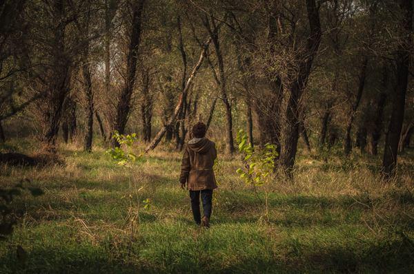 Люди и природа. зима, моё, зима 2017, Природа, люди и природа, Приднестровье, длиннопост