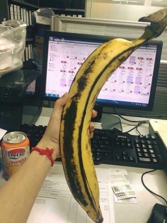 Член толщиной с банан