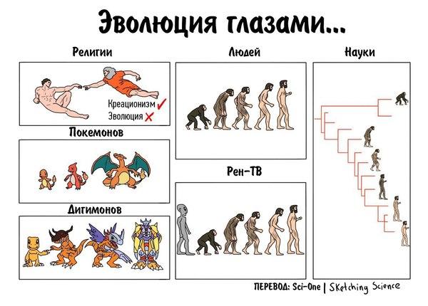 научный юмор Разные взгляды на эволюцию Наука юмор Комиксы Эволюция sketching science Научный