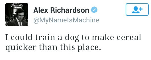 Отзыв отзыв, Собака, юморист, твиттер-стайл, twitter