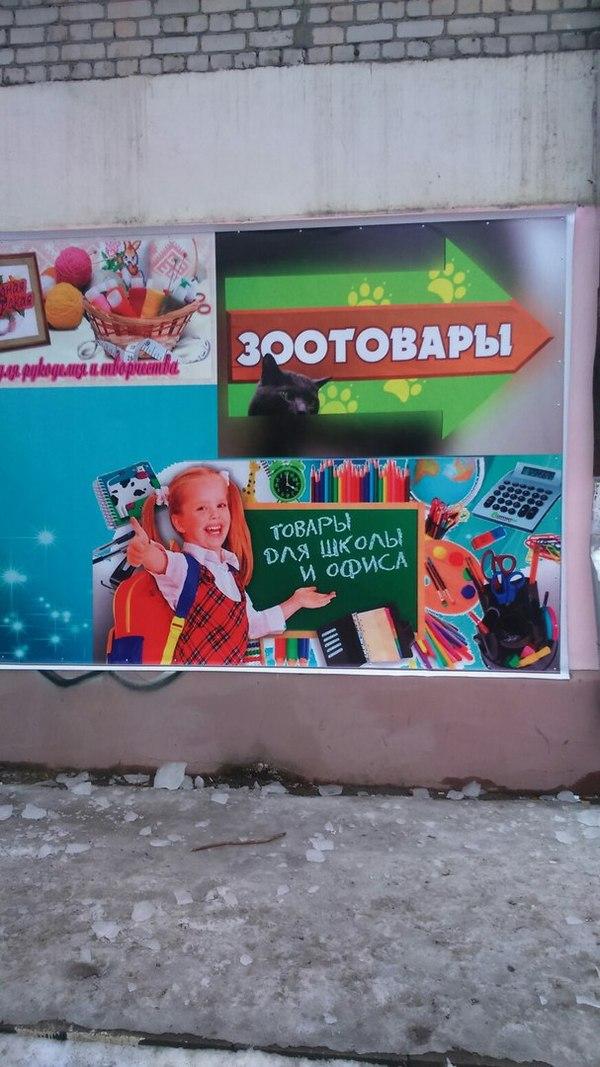 Зоотовары для школы и офиса! Брянск, Универсальный магазин, Синоним