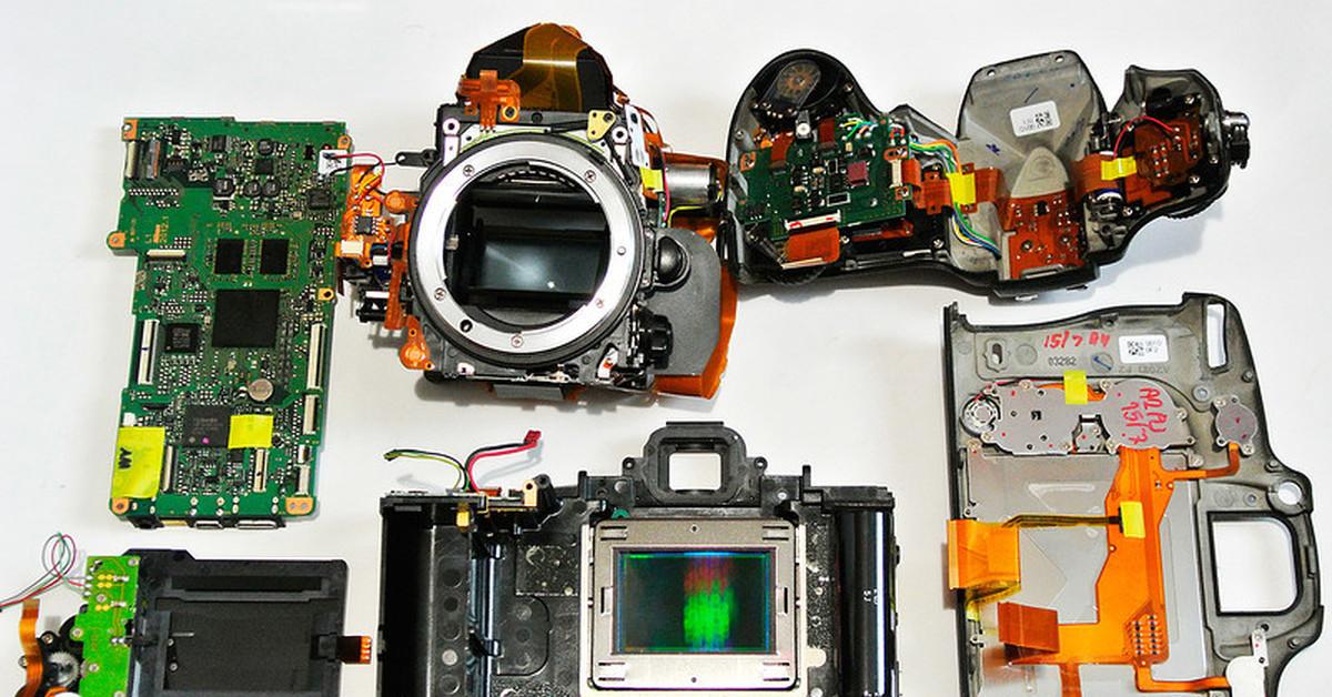 ибисы чаще отремонтировать цифровой фотоаппарат для вас
