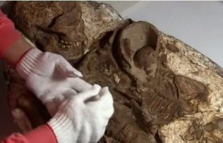 В Ирландии нашли захороненные останки 800 детей. Ирландия, Захоронение, Насилие над детьми, Не мое, Новости