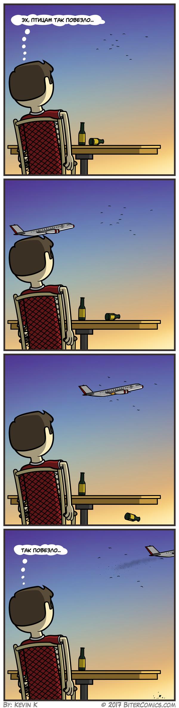 Птицам повезло комиксы, птицы, самолет, Bitercomics, длиннопост