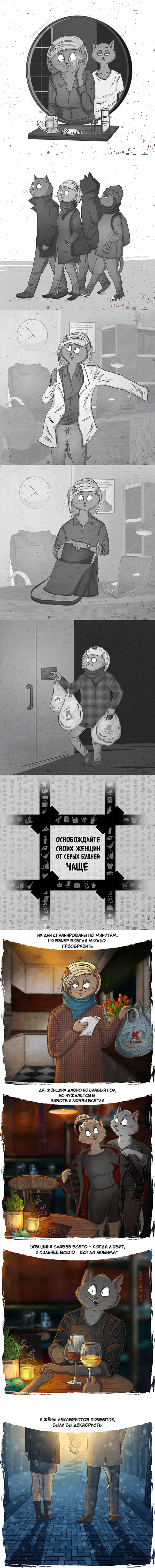 Берегите своих женщин Bird Born, котмиксы, Кот Степан, 8 марта, кот, иллюстрации, длиннопост