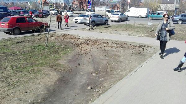 Весь город засрали! Краснодар, Россия, Навоз, дорога, пешеход, Благоустройство, город, Мэрия