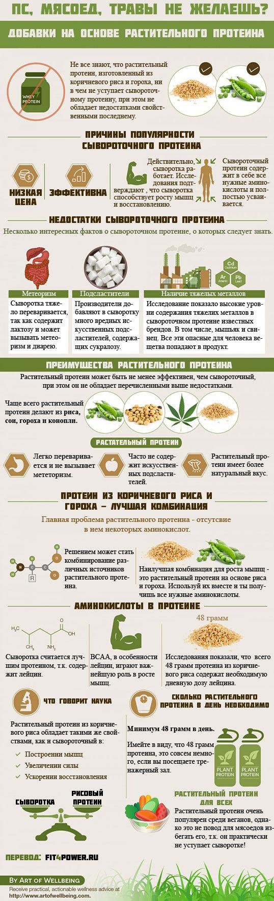 Растительный протеин Протеины, Спортивное питание, Вегетарианство, Бодибилдинг, Инфографика, Длиннопост