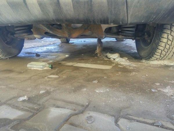 Мышь повесилась... под машиной мышь повесилась, Новосибирск, машина