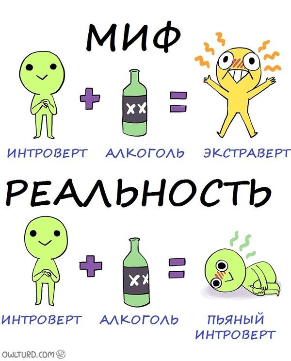 Интроверт и алкоголь - миф и реальность Комиксы, Owlturd, Алкоголь, Миф и реальность, Интроверт, Экстраверт, Перевод