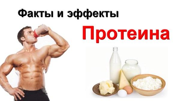 Вред протеина Протеины, Do4a, Качалка, Бодибилдинг
