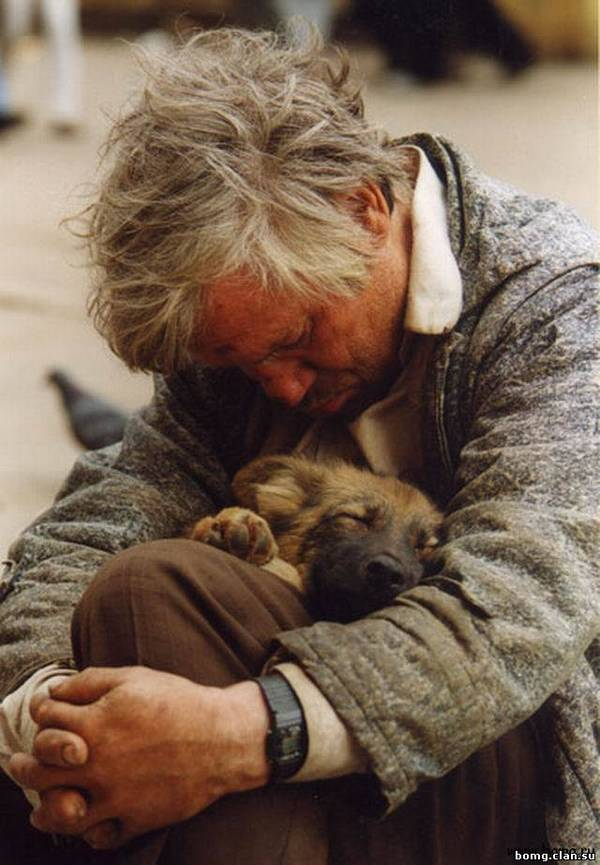Лайфхак с собаками на экономии топлива Собака, друг, верность, экономия денег, текст