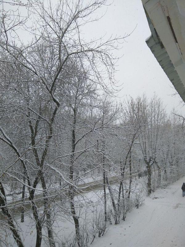 Диалог в телеграме Екатеринбург, Снегопад, Шутка, Ниже пояса, Текст