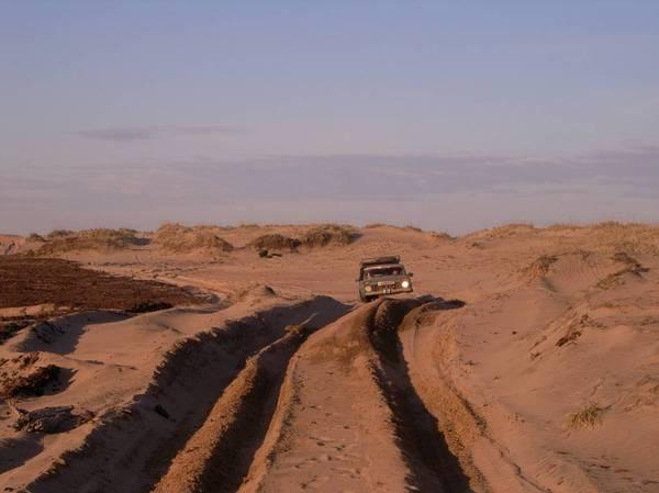 Заполярье - родина моя (часть 6. Песчаная пустыня за полярным кругом) Запольяре, кузомень, песок, Пустыня, длиннопост