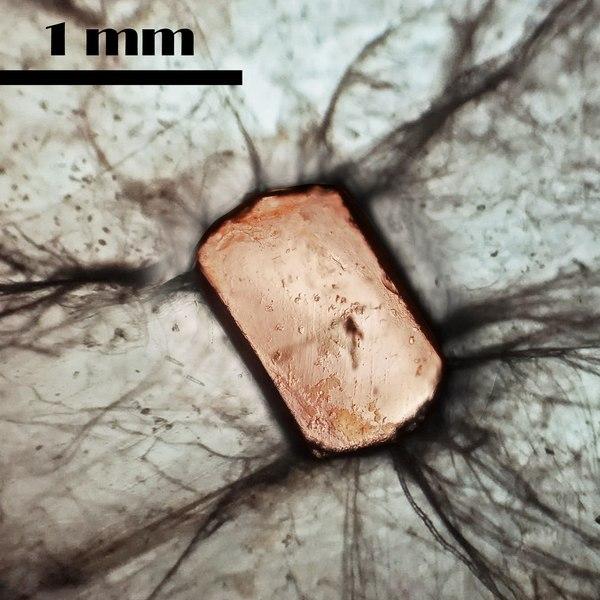 Кристалл монацита-(Ce) в слюде химия, лига химиков, кристаллы, фотография, микроскоп, Геология