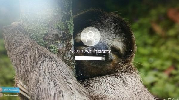 Так меня встретила сегодня Windows.