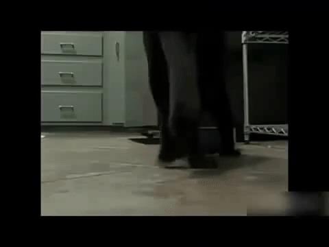 Кельтский кот