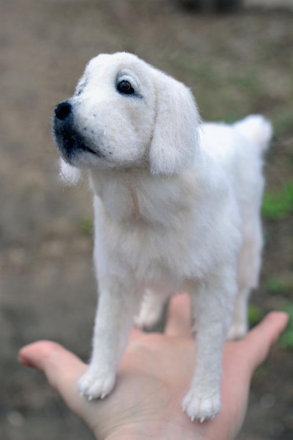 Ретривер из шерсти ретривер, Собака, шерсть, войлок, валяние, рукоделие, игрушки из шерсти, рукоделие без процесса, длиннопост