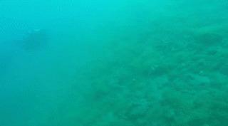 Дайвер запечатлел подводное землетрясение