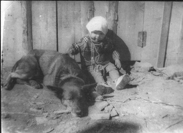 Первая собака  :) Собака, староефото
