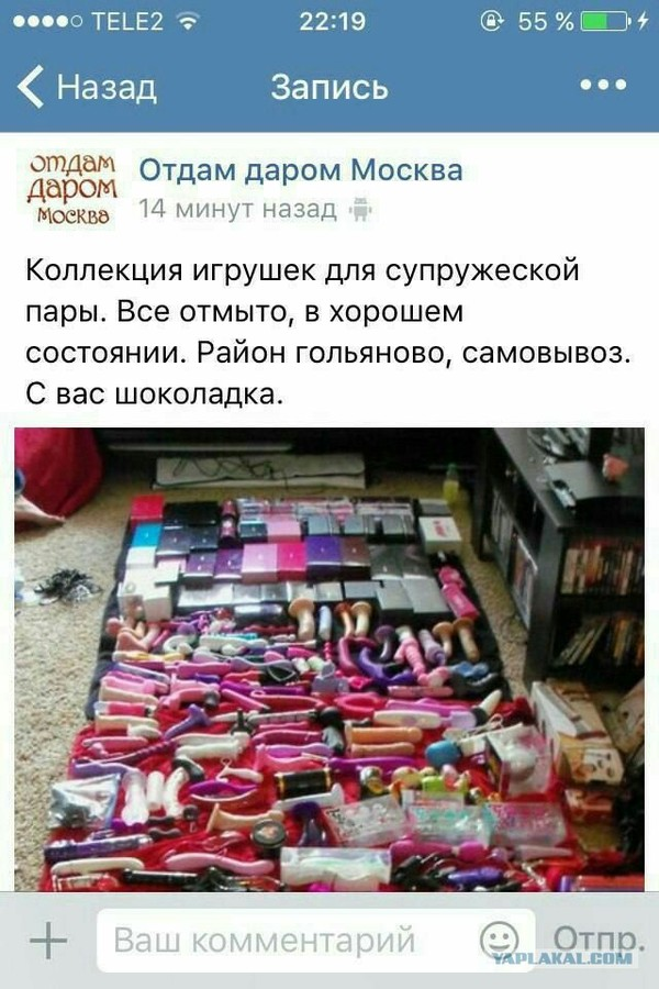 Кто-то знает толк в развлечениях)