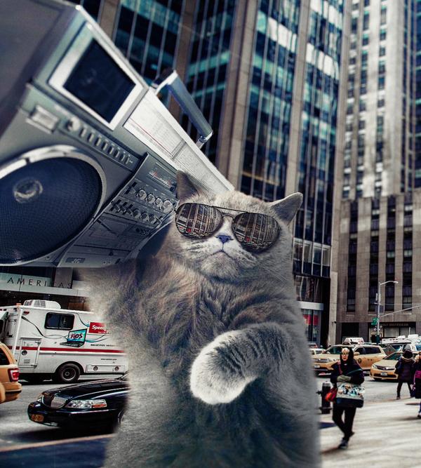 Просто кот Кот, Photoshop, БумБокс