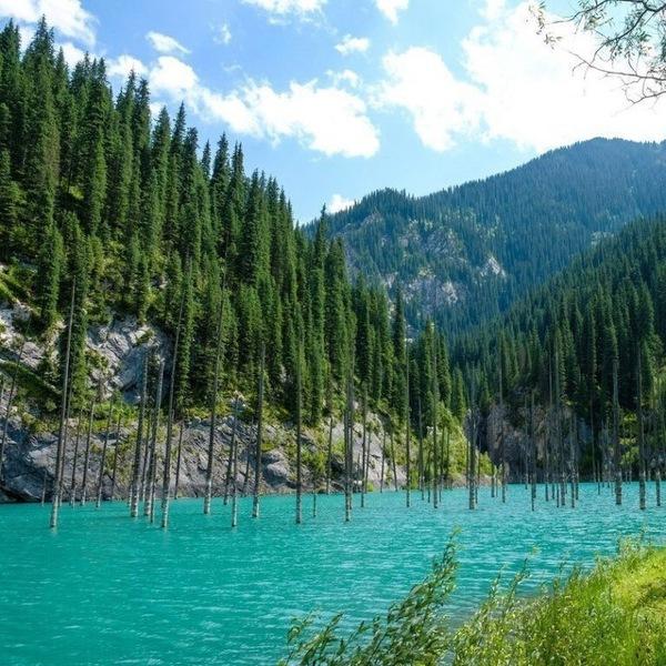 ЗАГАДКИ ОЗЕРА КАИНДЫ. КАЗАХСТАН Казахстан, Природа, пейзаж, Каинды, Озеро, Интересное, познавательно, дайвинг, длиннопост