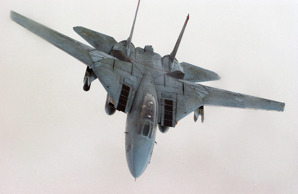 F-14 TomCat F-14, TomCat, AIM-54, AIM-9, FCR, РЛС, ТомКэт, USAF, гифка, длиннопост