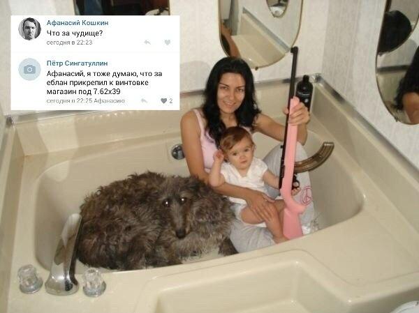 Винтовка и собака. Собака, винтовка, Магазин, семейное фото