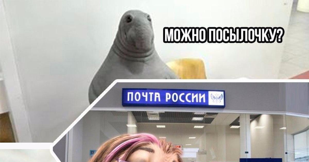 почта россии фото ленивец