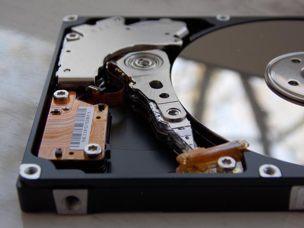 Весенний HDD HDD, Винчестеры, Жесткий диск, Весна, Фотография